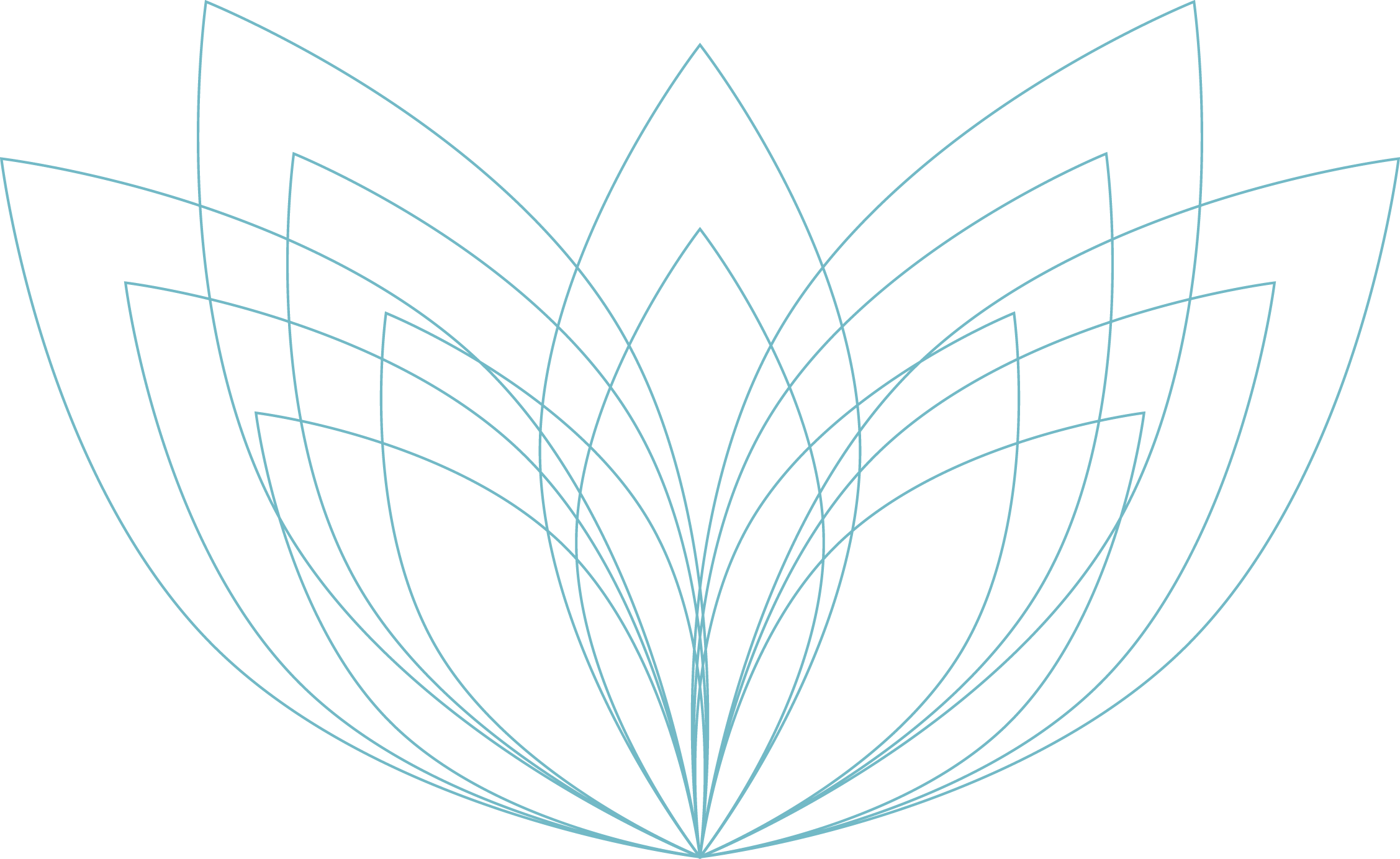 lotus outlines